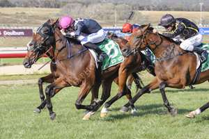 Russian Romeo winning at Goulburn